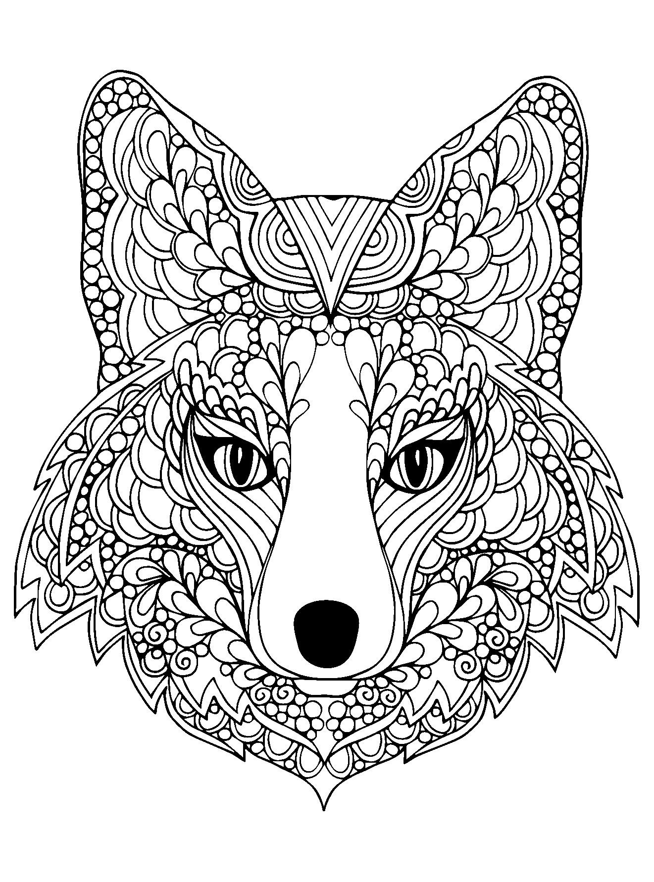 Malvorlage Fuchskopf  Bildergebnis für fuchs zeichnung