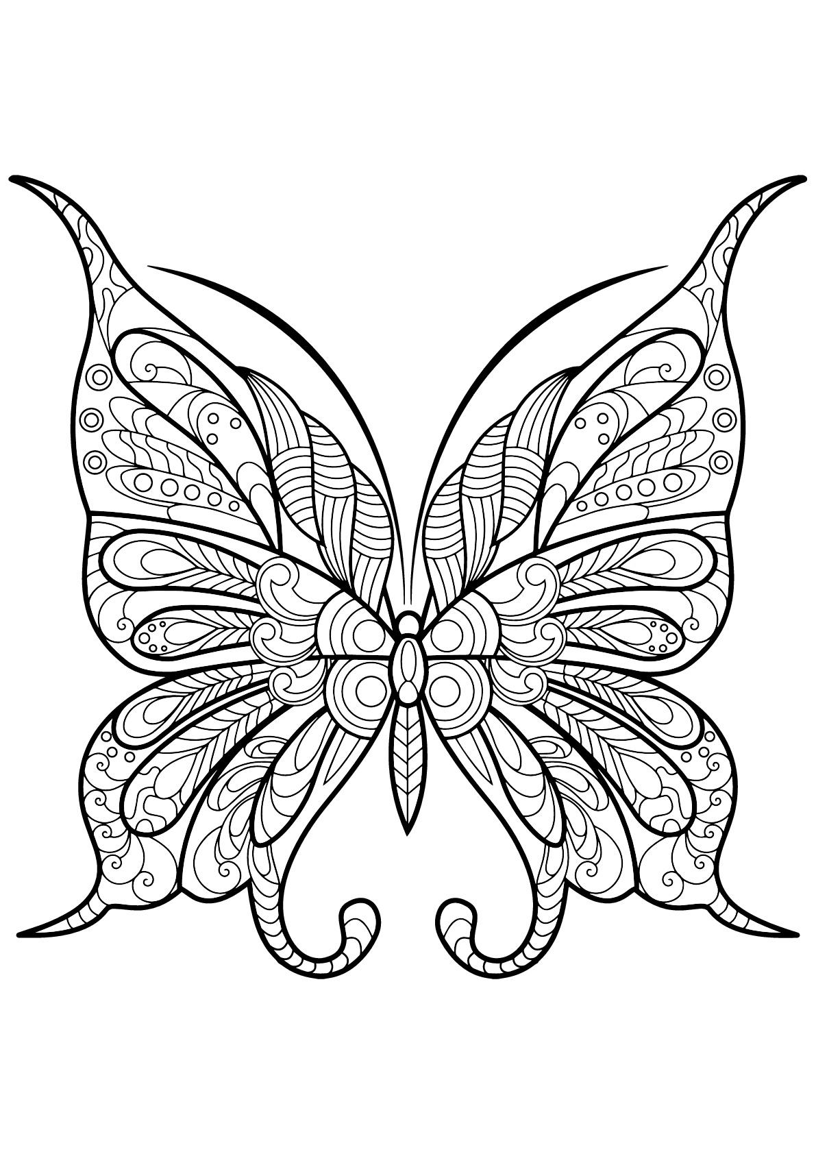Butterfly Beautiful Patterns 9