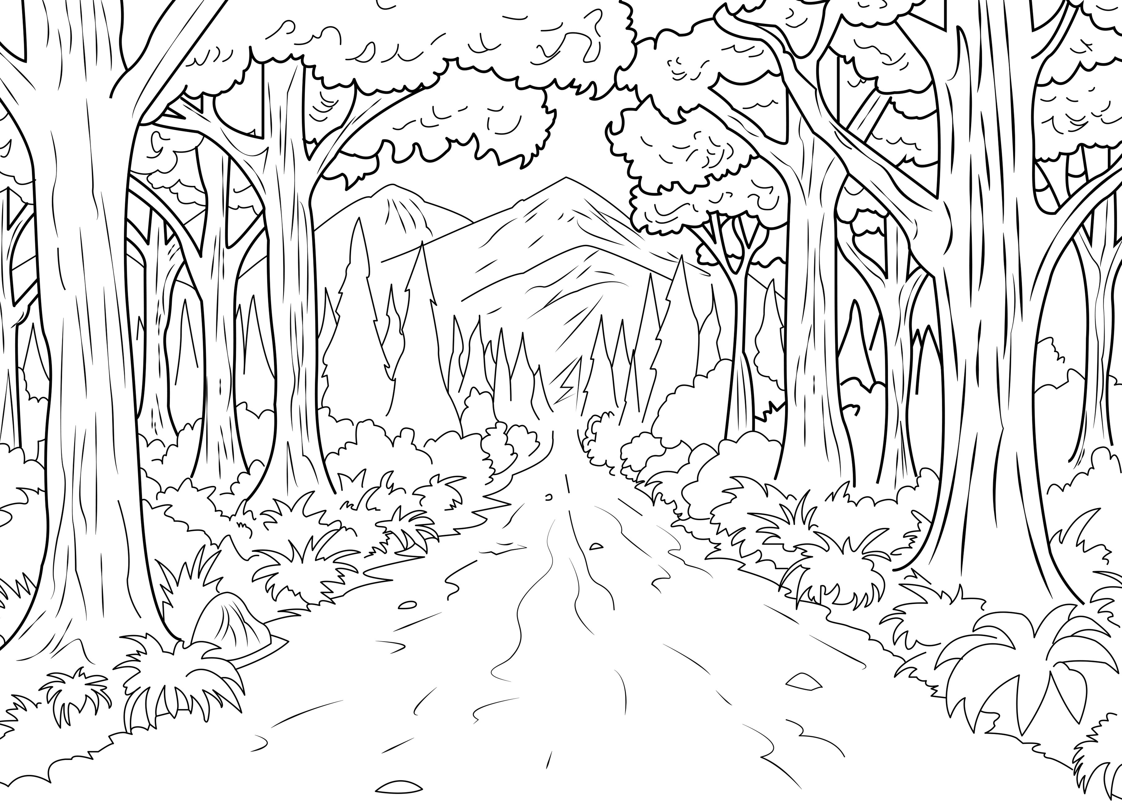 Forest celine  Jungle  Forest Adult Coloring Pages