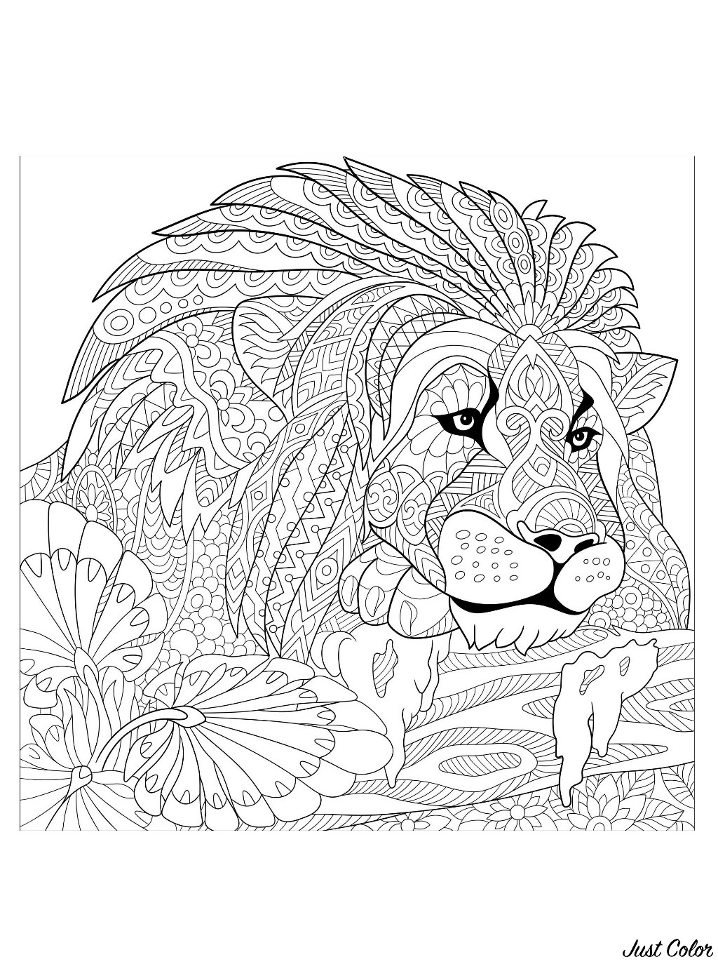 Lion King With Patterns