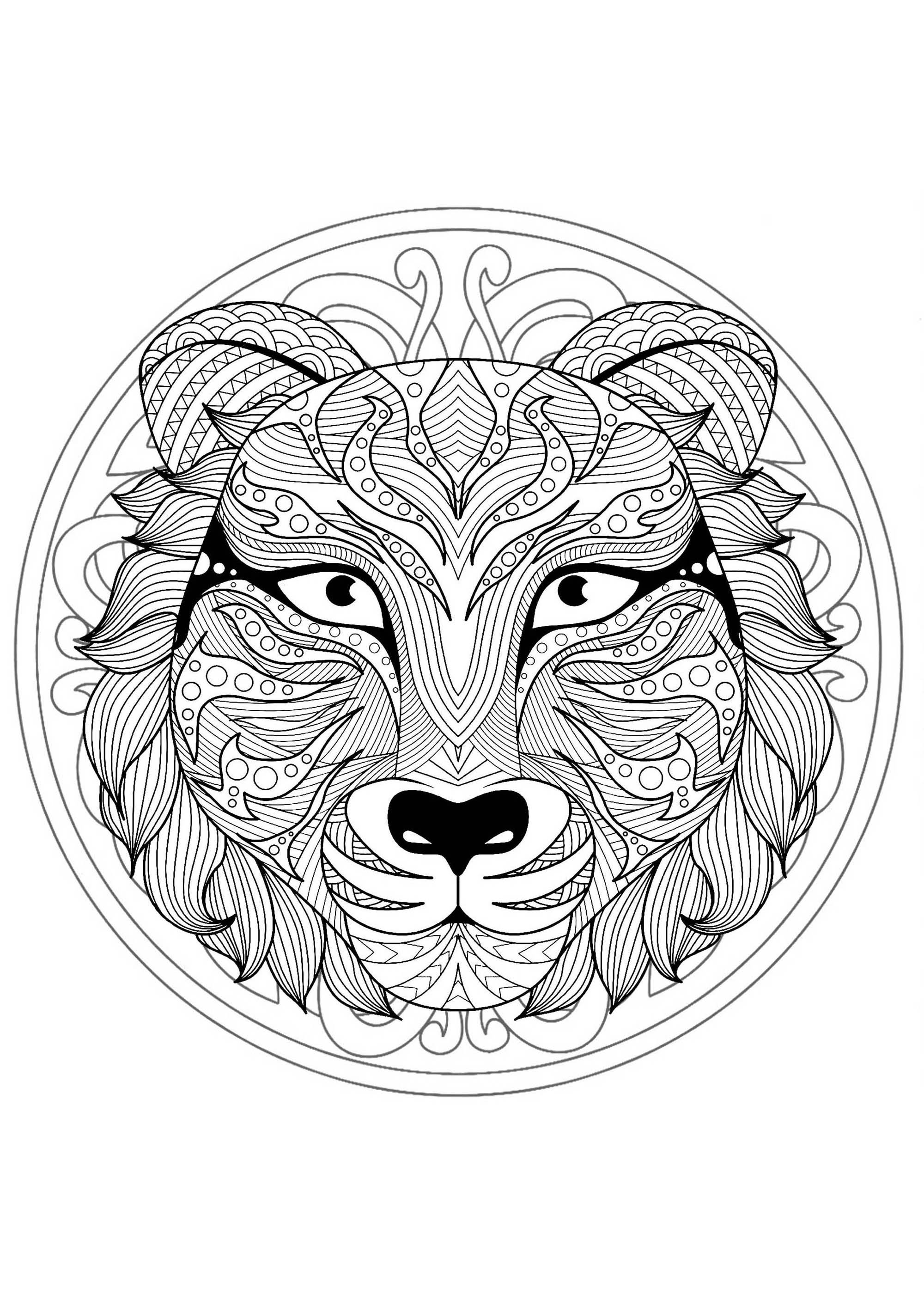 Mandala With Gorgeous Wolf Head And Geometric Patterns M