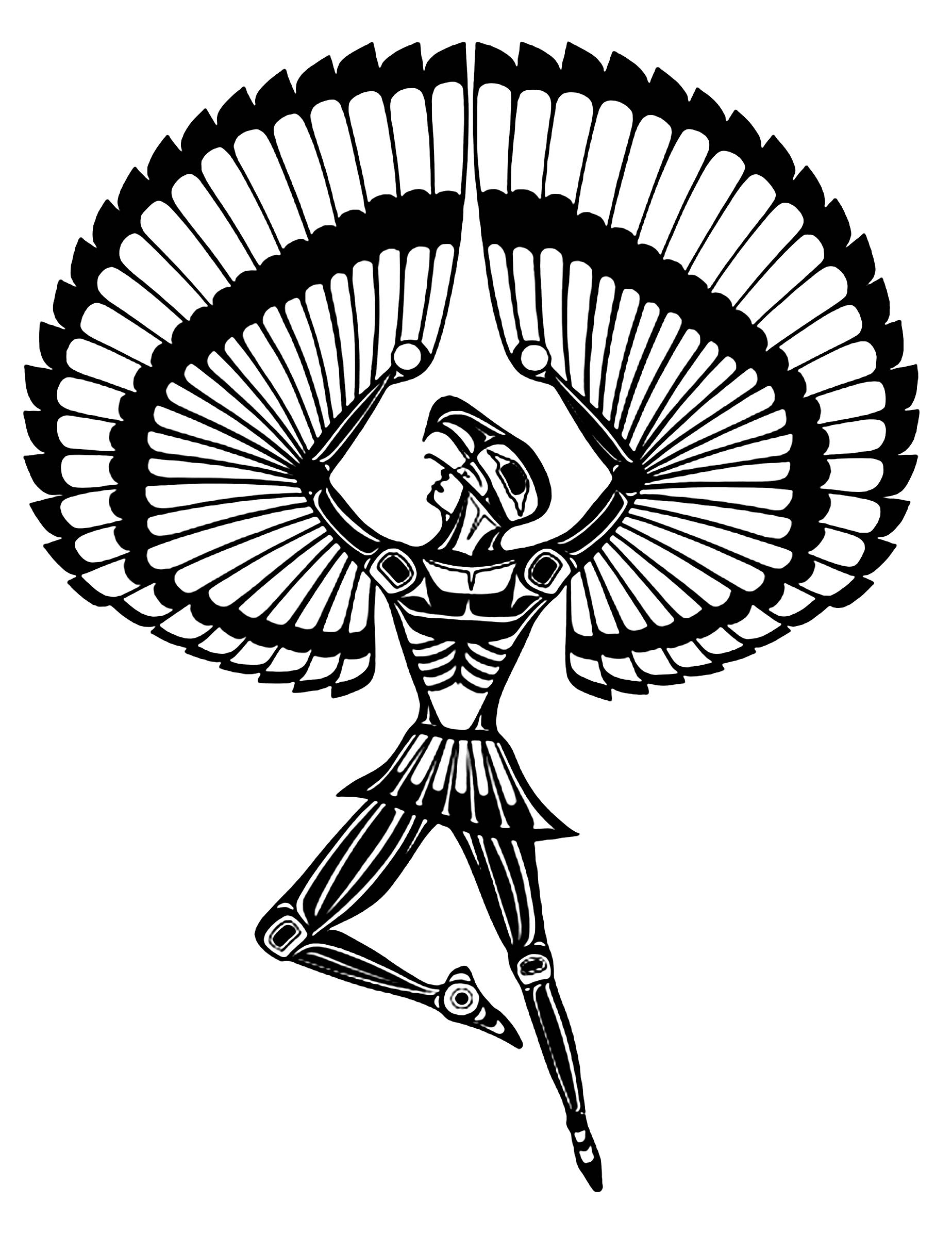 Eagle Feather Coloring Pages