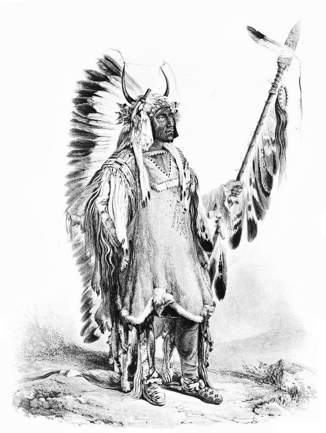 Ma to toh pe or four bears - Native American Adult Coloring Pages