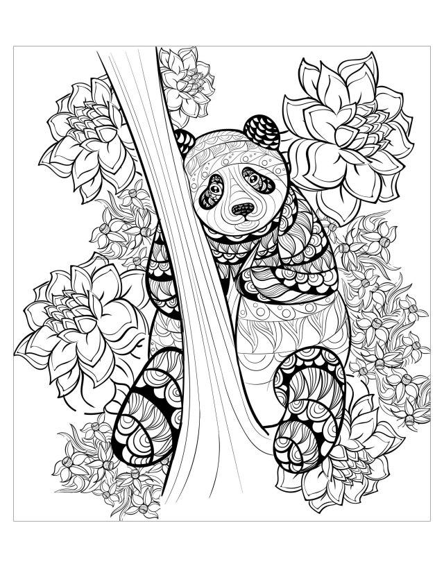 Panda by alfadanz - Panda Adult Coloring Pages