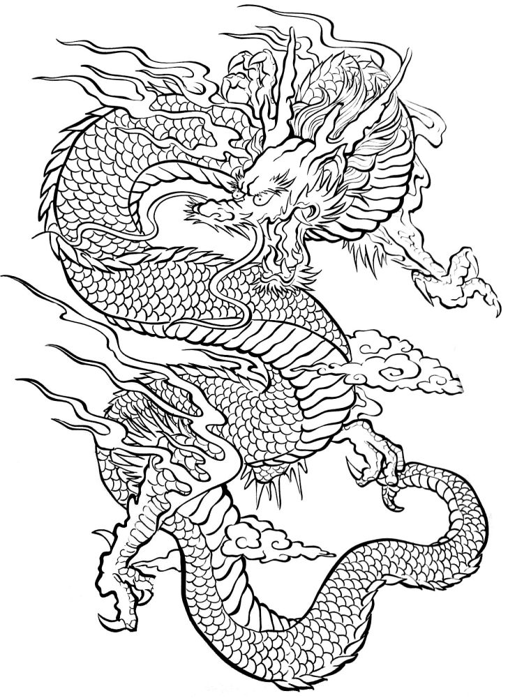 Dora: Dragon Coloring Page For Adults. Coloring Tatouage Dragon Widescreen Page For Adults Adults Smartphone High Resolution Imageu Dtatoo Tattoos