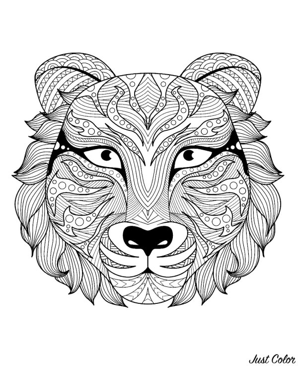 coloring pages of tigers # 64