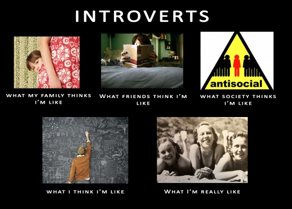 Image result for Meme introverts