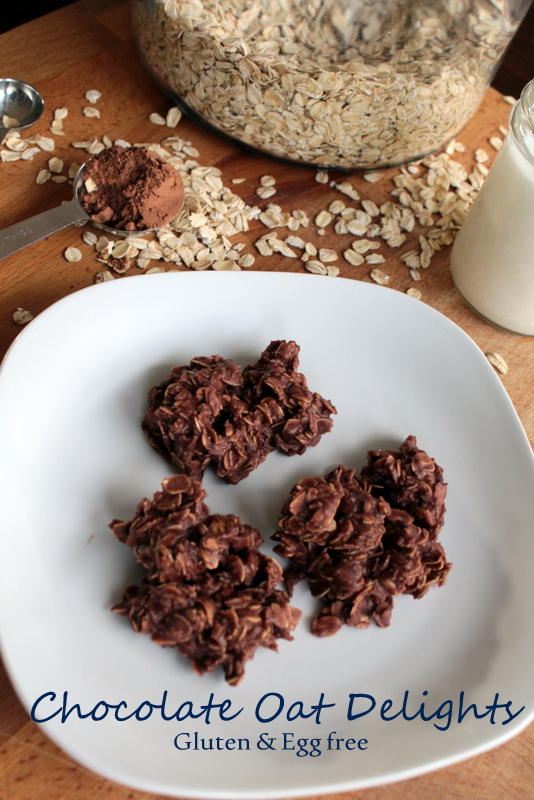 Chocolate Oat Delights cookie. Full recipe on Just Dabbling Along