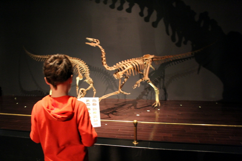Sleepover with dinosaurs. Best tour of the Royal Tyrrell Museum, Drumheller Alberta.