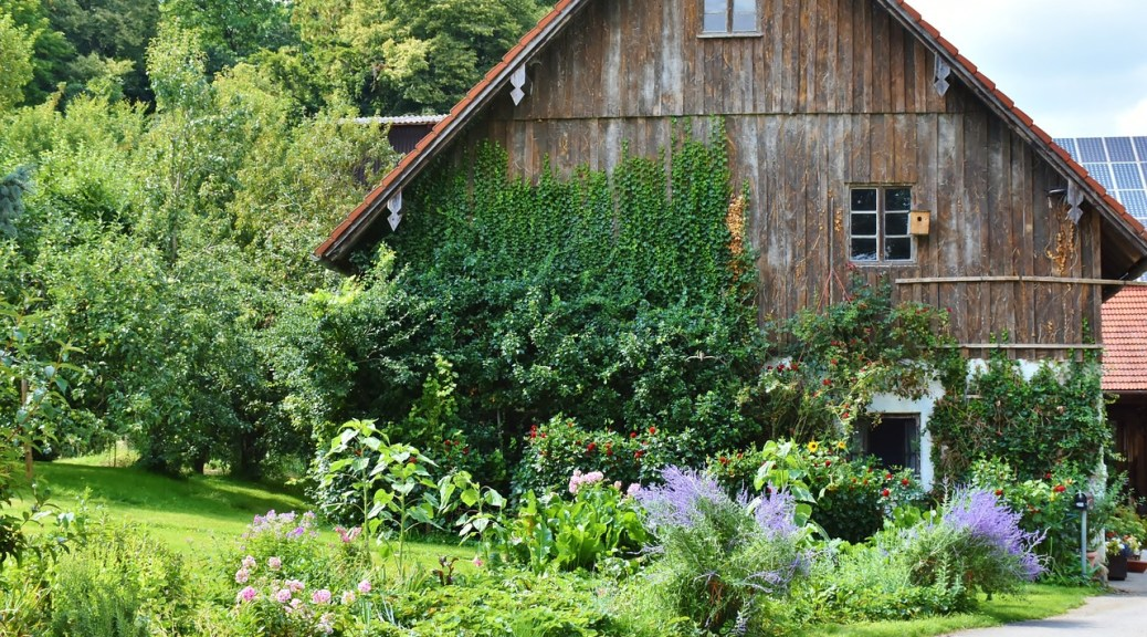 Living the Homestead Life ~ A Homesteading Story