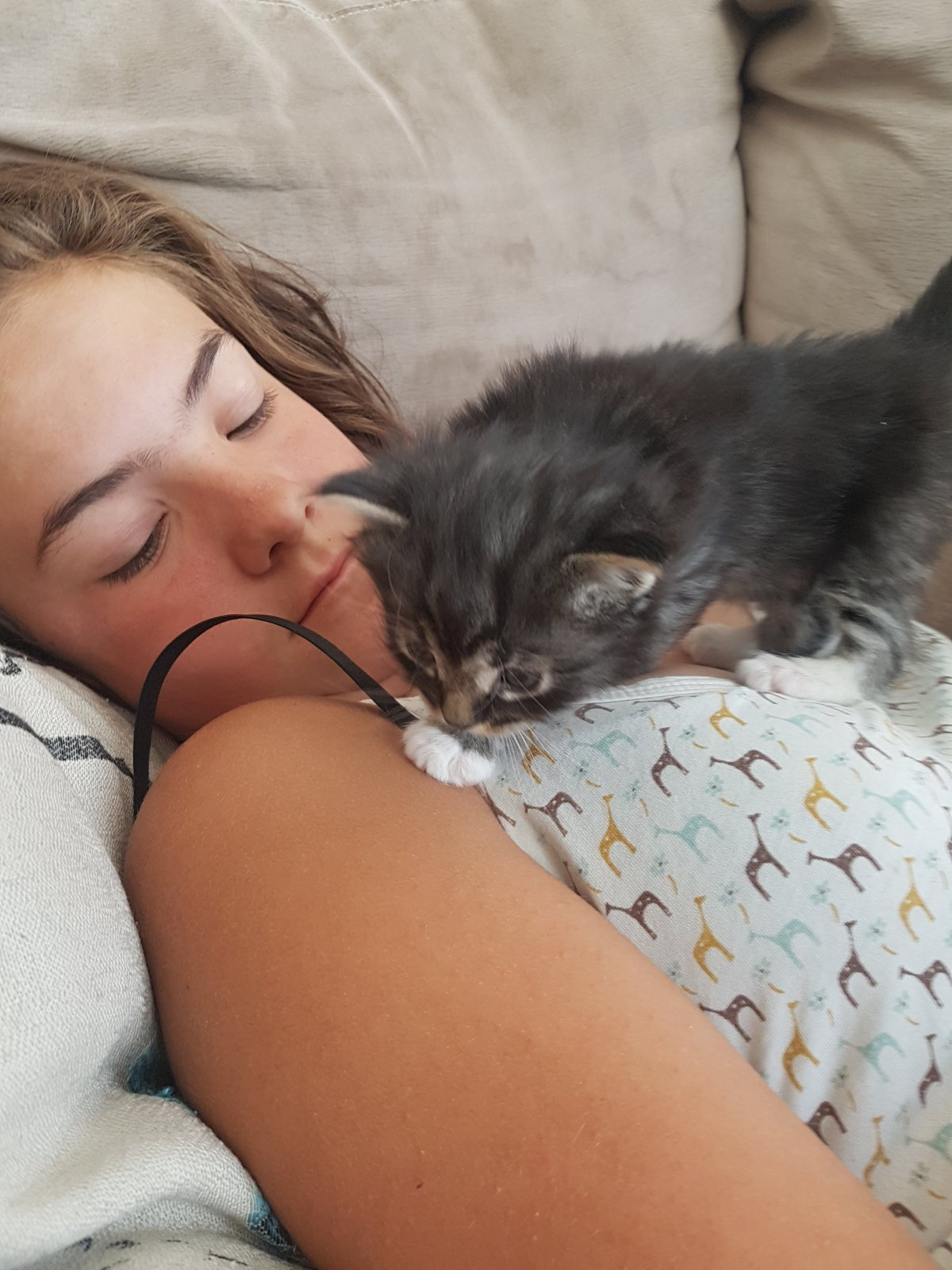 Kids and kittens, so cute!