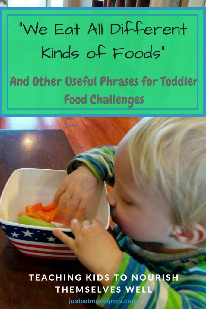 Raising kids to have a positive relationship with food. Useful phrases to use for common toddler food issues and set the stage for lifelong nourishment.