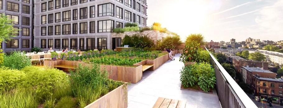 Flat Roof Garden Conversions
