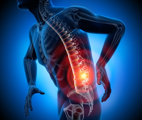 Secrets behind the Causes of Back Pain