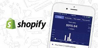Beginner's Guide: Shopify vs. Woocommerce: Which Platform Is Better?