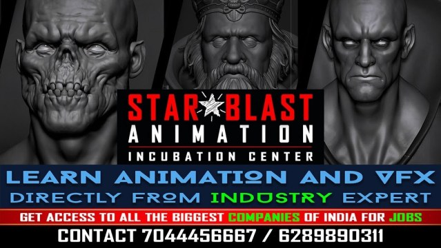 Which institutes provide animation courses for professionals in Kolkata?