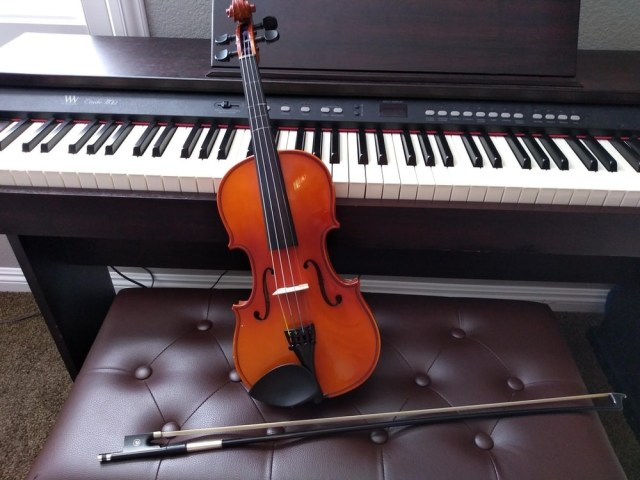 Musical Instrument Shopping Guide