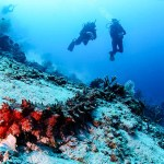 diving spot bali candidasa indonesia travel justgoindonesia