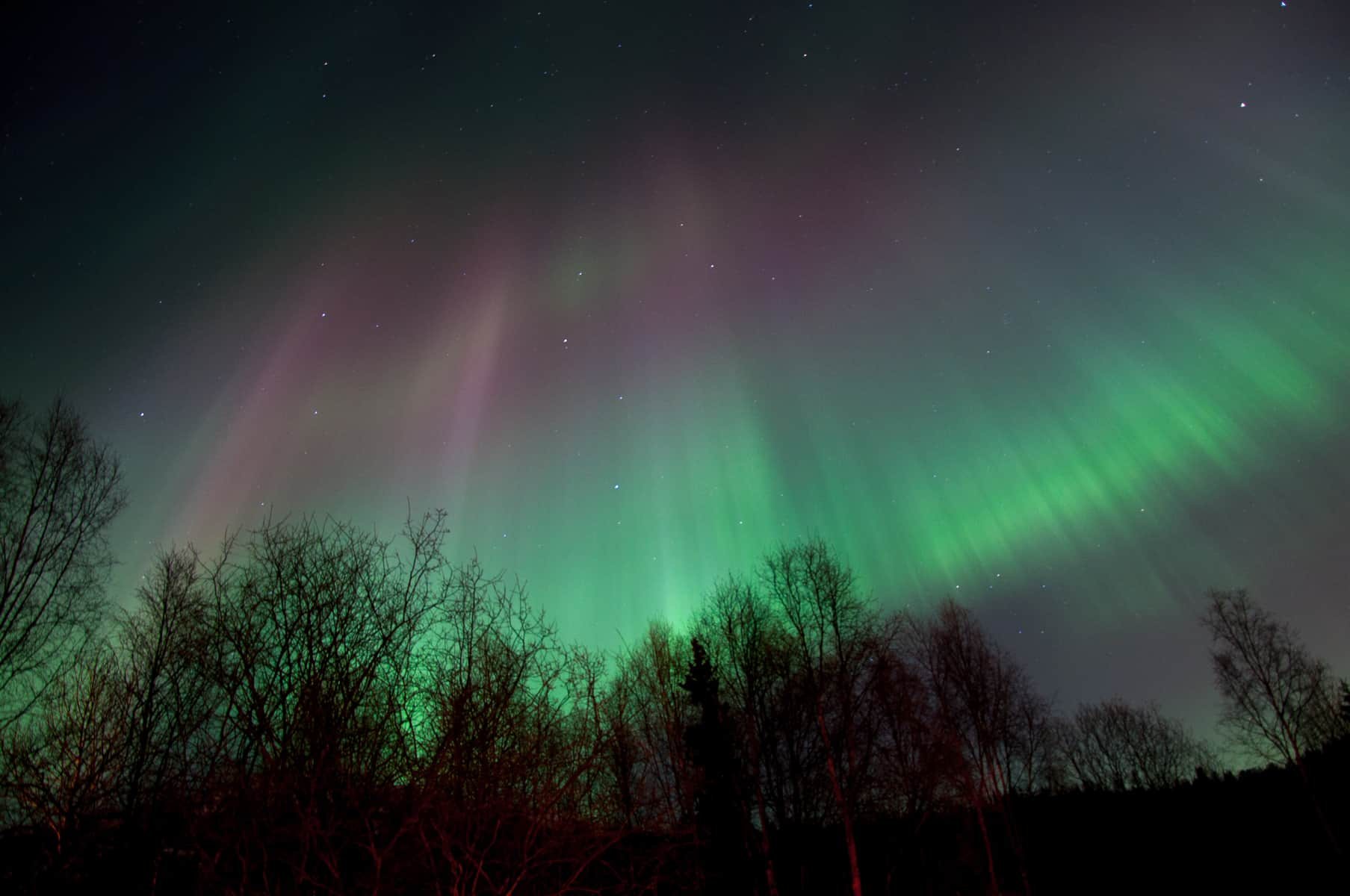 Can You See Northern Lights Washington