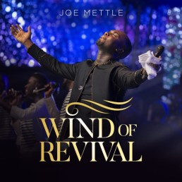 500x500bb-2 Full-List Of Songs Written and Recorded by Joe Mettle