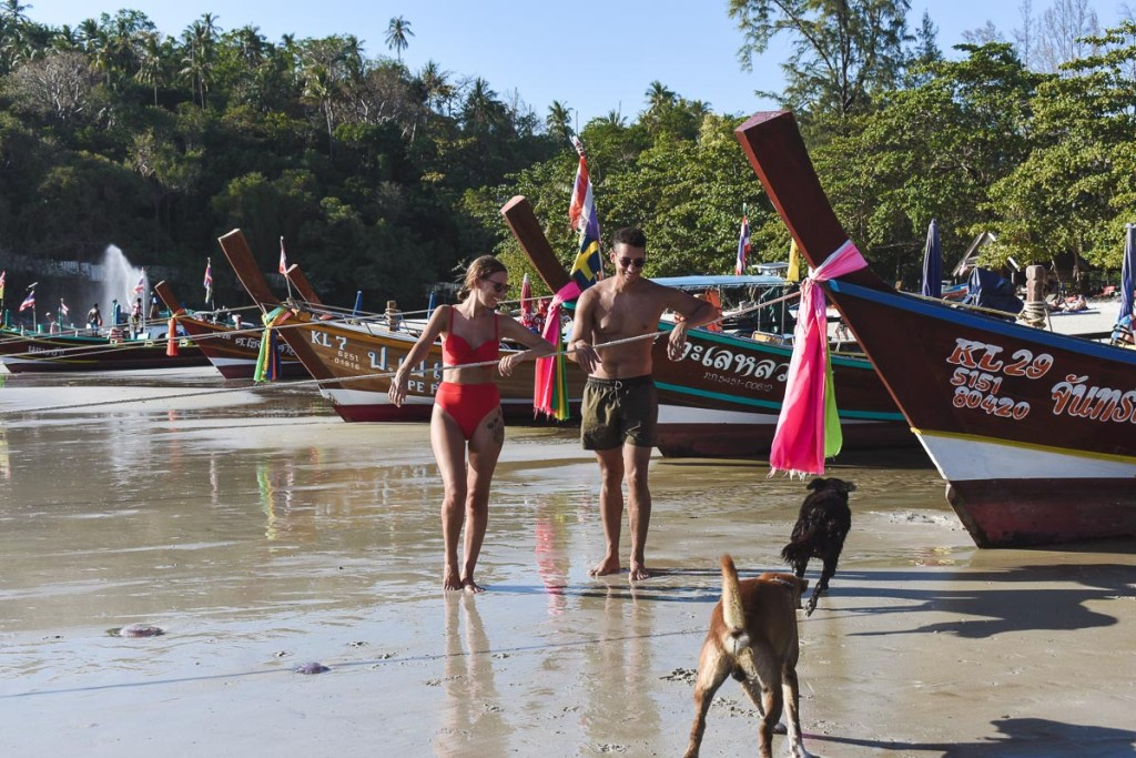 Stray dogs running on the each next to long-tail boats