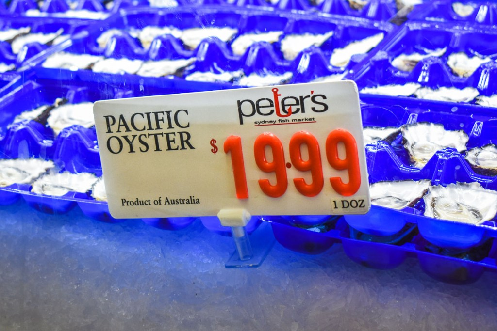 Pacific oyster trays