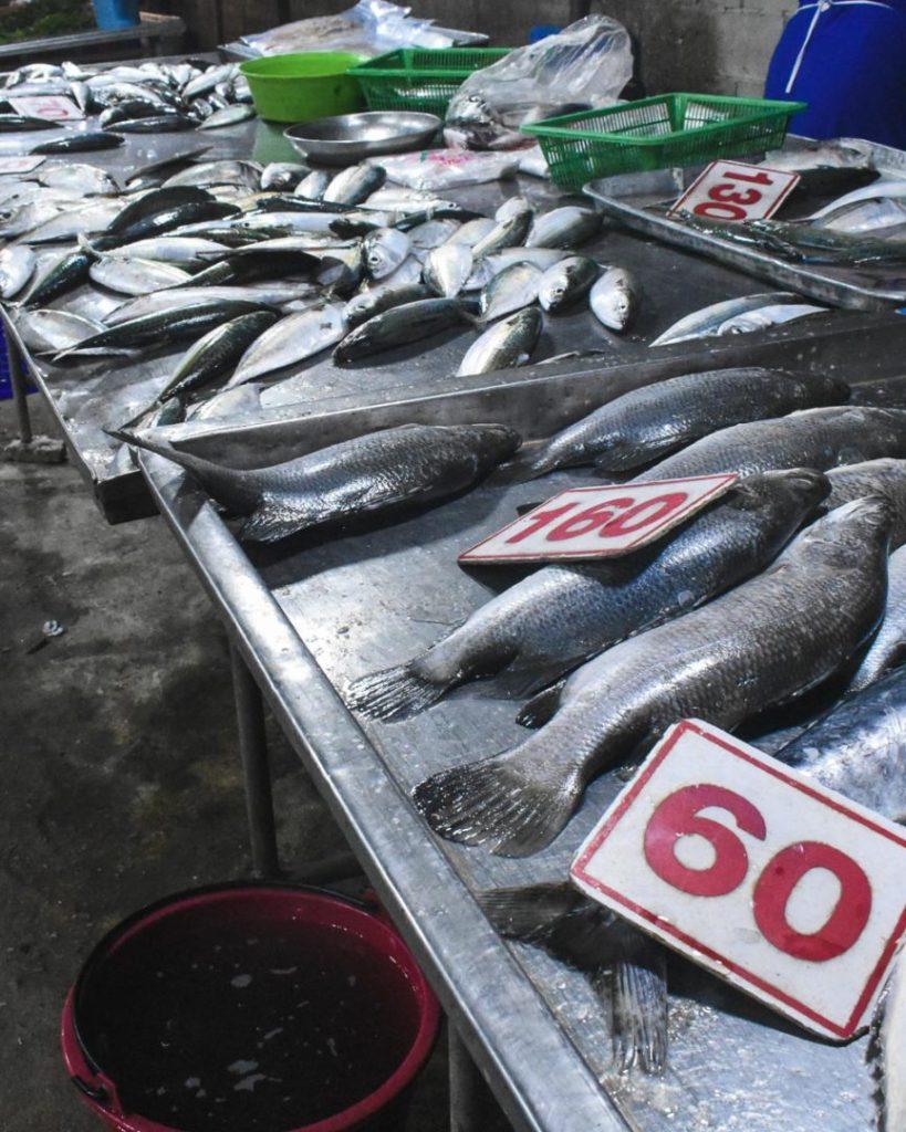 Fresh fish at a market in Phuket
