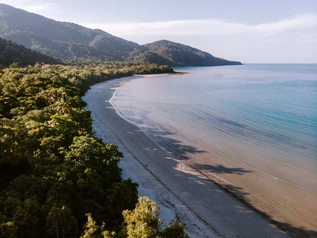 What To Do in Cape Tribulation - The Best Bits