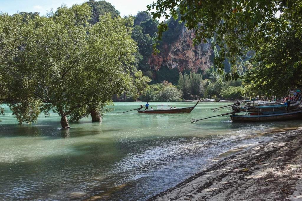 mangroves east railay thailand