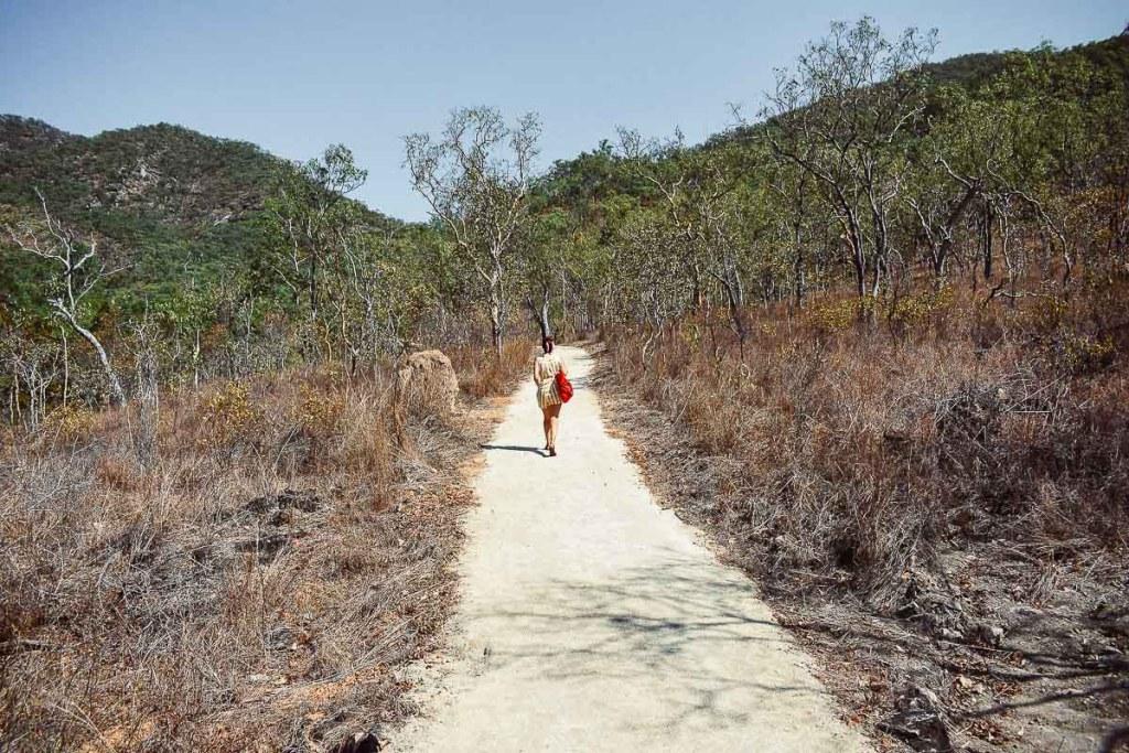 Kerrie bush walking and hiking to the emerald creek falls