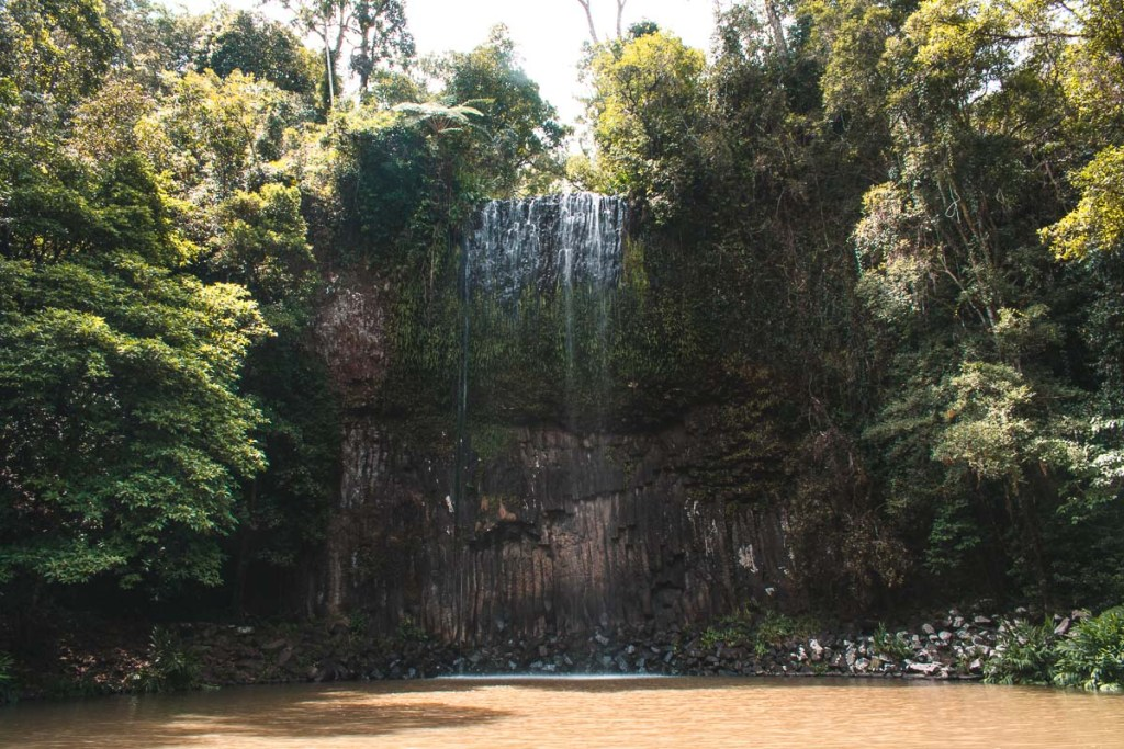 Waterfall - How to get to Millaa Millaa Falls