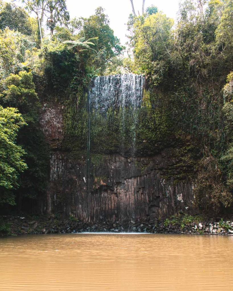 Millaa Millaa Falls showing the waterfall in australian draught