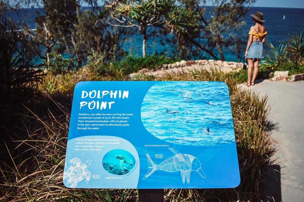 dolphin point sign
