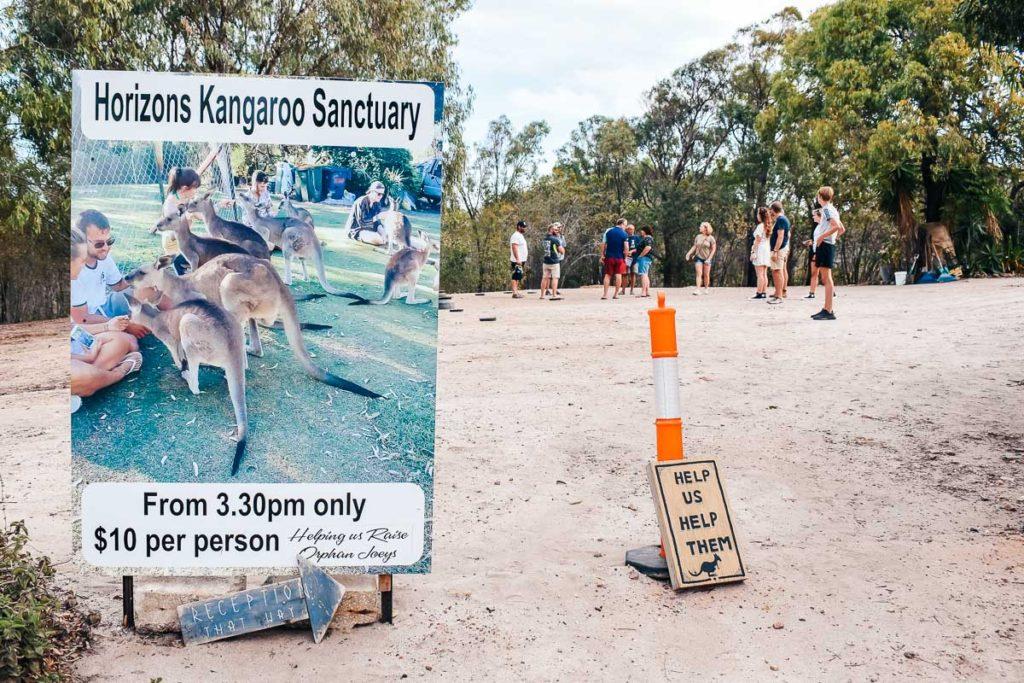 Horizons Kangaroo Sanctuary & Camp Ground Entrance