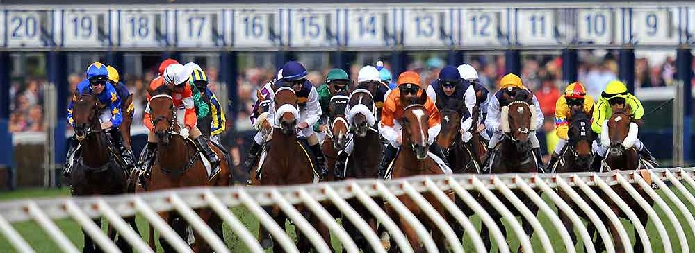 caulfield cup start of race jumping from barriers