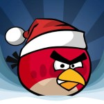 Angry Bird Crack