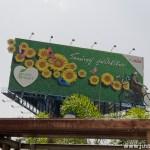 Green Heart Advertisment