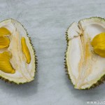 Most Expensive Durian