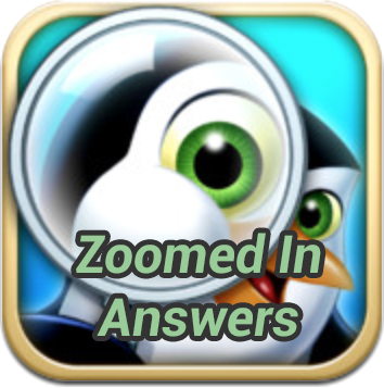 Zoomed In Answers 2