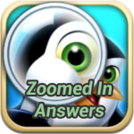 Zoomed In Answers