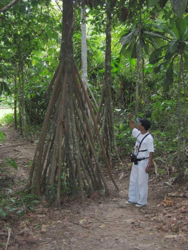 February 17 - Iquitos