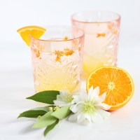 COASTAL ORANGE BLOSSOM GIN COCKTAIL