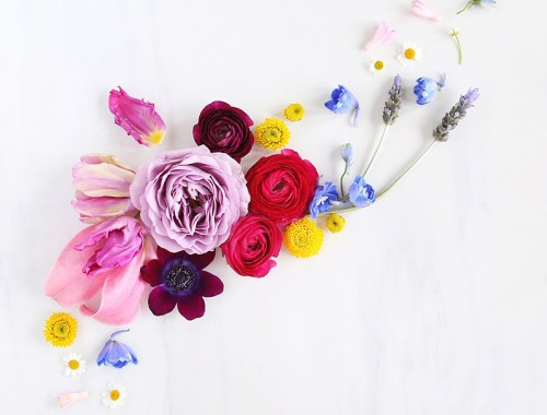 Digital Blooms March 2018 | Free Desktop Wallpapers for Spring // JustineCelina.com x Rebecca Dawn Design