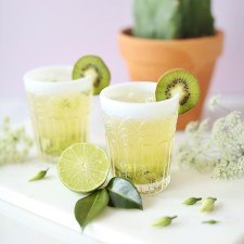 Spring Equinox Kiwi Elderflower Smash + Eau Claire Distillery Prickly Pear EquineOx Giveaway // JustineCelina.com