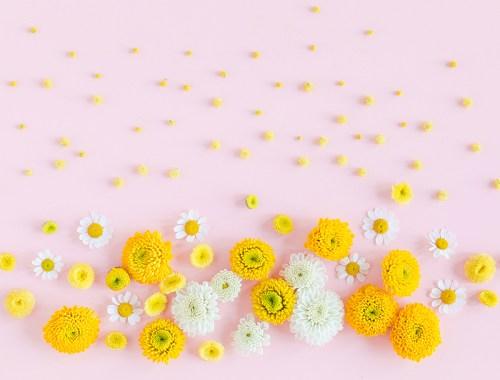 Digital Blooms May 2018 | Free Pantone Inspired Desktop Wallpapers for Spring | Free Pastel Tech Wallpapers | Design 2 // JustineCelina.com x Rebecca Dawn Design