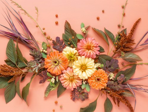 DIGITAL BLOOMS NOVEMBER 2020 | FREE DESKTOP WALLPAPER | Free Fall 2020 Floral Desktop Wallpapers featuring Alberta grown Zinnias and Red Amaranth along with foraged Western Snowberries, Wood's Rose Leaves, Broomsedge Bluestem and Garden Asparagus Foliage and Berries on an Pantone Autumn/Winter 2020/2021 Peach Nougat background | Free Fall Floral Wallpapers | Boho Flower Fall 2020 Tech Wallpapers | The Best FREE Fall Tech Wallpapers | Free Floral Tech Wallpapers Autumn 2020 // JustineCelina.com