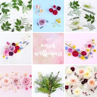 MARCH DIGITAL BLOOMS ROUNDUP | 8 FREE TECH WALLPAPERS