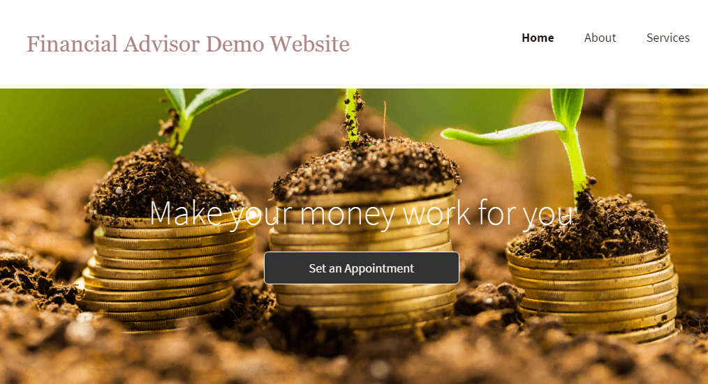 Financial Advisor Website Demo