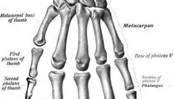 Hand and Wrist Fracture and Injury Settlements (Car