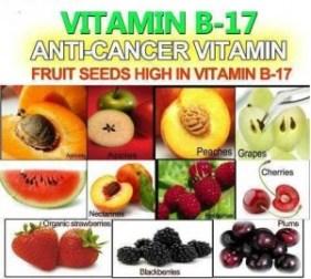 Anti-Cancer-Vitamin-Vitamin-B17
